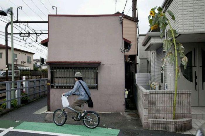 fukushima_08
