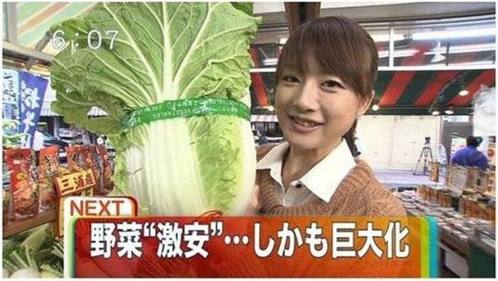 fukushima_26