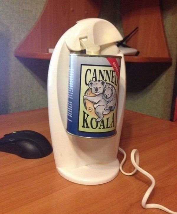 canned_koala_02