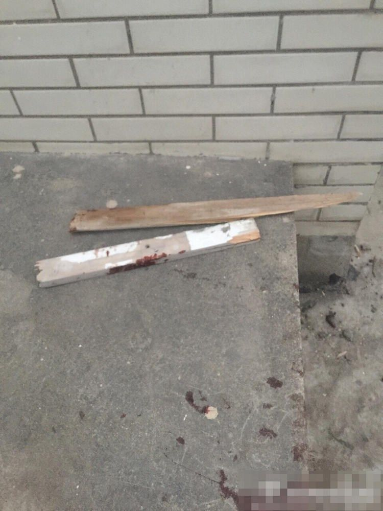 sobaki-posle-medicinskih-jeksperimentov_05
