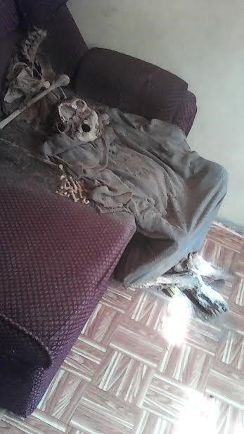 skelet-v-dome-pastora_03