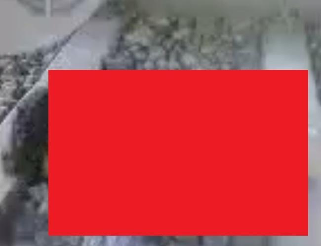 VQl7oDTcVxyxF9X1487643448