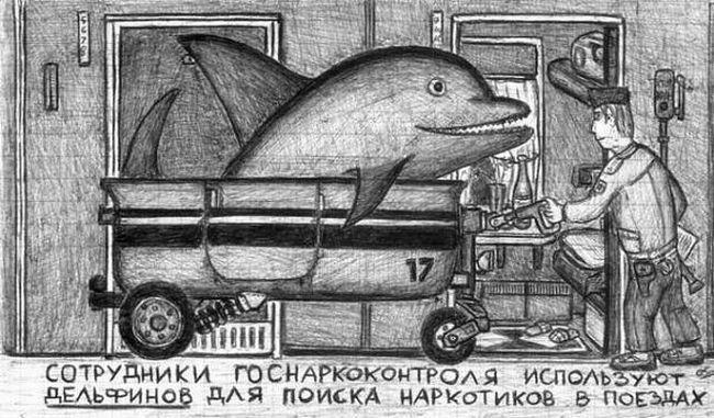 zarisovka-0046