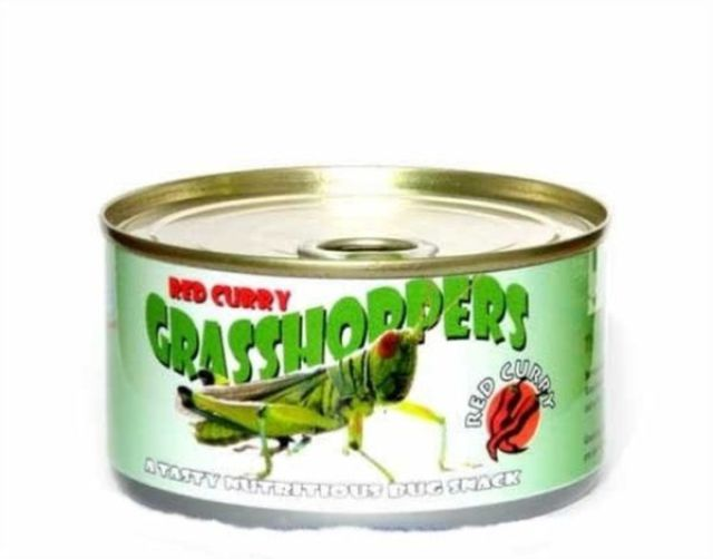 you_never_heard_about_canned_products_like_these_640_30