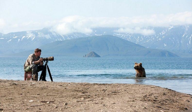 bearsinkamchatka3422