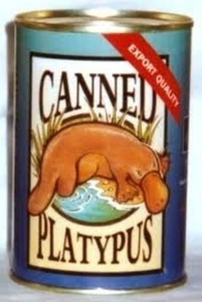 you_never_heard_about_canned_products_like_these_640_28